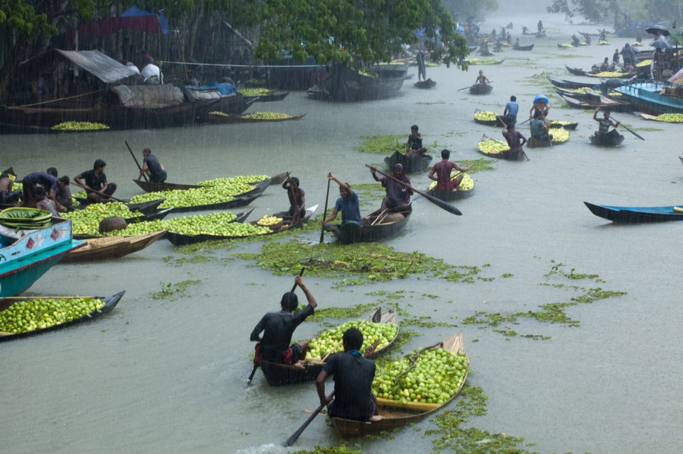 Floating Guava Market, Bangladesh