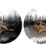182_wood burn_AA