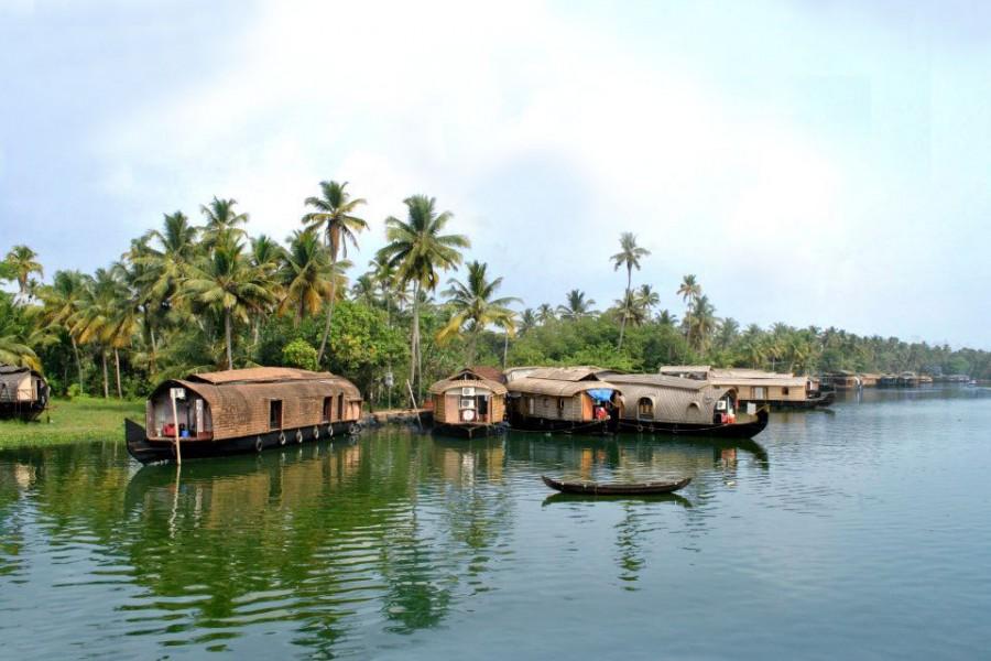 Hub of Kerala houseboats| Photo credit: Shaswati Chowdhury