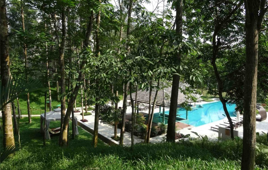 Swimming Pool: It is set in a natural dip, surrounded by dense vegetation providing required privacy | Photo Courtesy : Md. Ishtiaque Zahir Titas